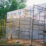 2007 (3)
